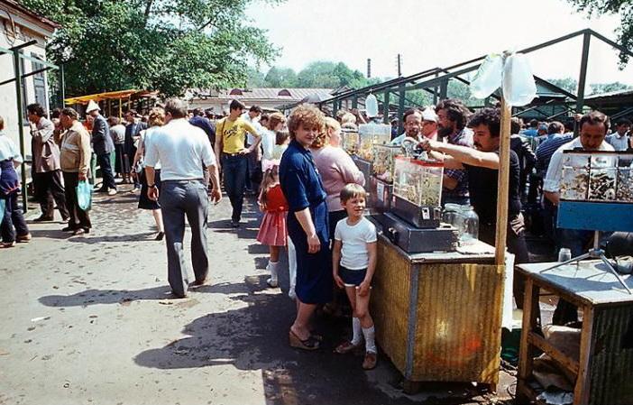 Фото №42 Птичий рынок